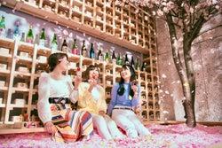 「SAKURA CHILL BAR」花びら120万枚の桜プールでいちご&地酒を堪能
