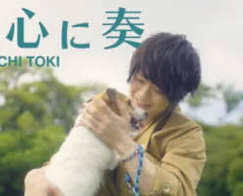 新曲MVは犬目線!?土岐隼一2ndシングル「真心に奏」MVショートバージョン・ジャケット写真・リリースイベント情報公開!