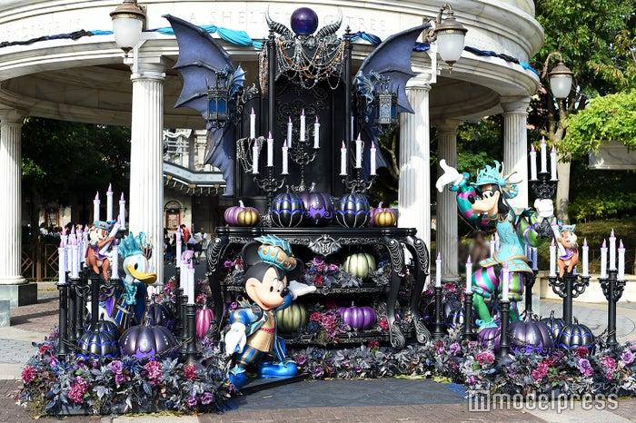 デコレーション/東京ディズニーシー(C)モデルプレス(C)Disney