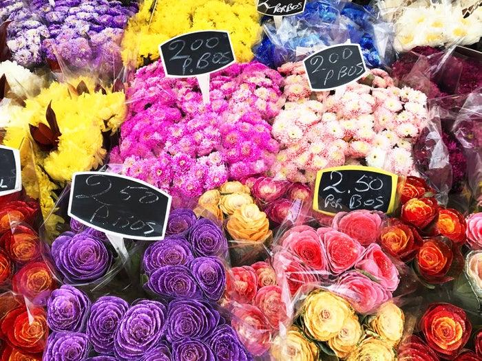 カラフルな花々に目移り(提供写真)