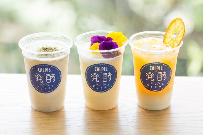 (左から)「カルピス」+味噌BLEND、「カルピス」+糀甘酒BLEND、「カルピス」+ヨーグルトBLEND