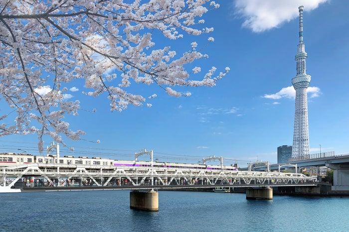 すみだリバーウォーク/画像提供:東武鉄道