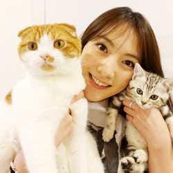 【美女とペット】知英と愛猫「レオン」(左)と「ニニ」(右)/画像提供:所属事務所