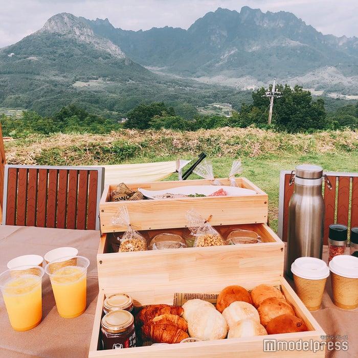 とってもお洒落な朝食ボックス(C)ビューティーガール