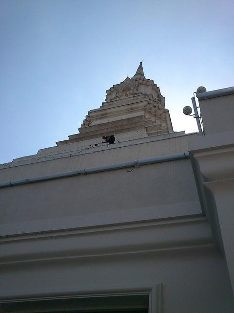 大仏塔/Phra Maha Chedi Maha Rajamongkol, Wat Paknam by Paul Trafford