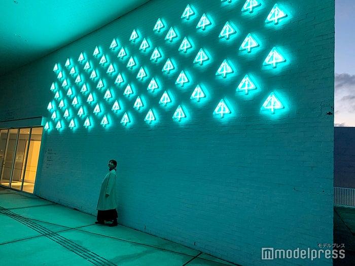 ネオンが灯ると幻想的な雰囲気に(C)モデルプレス