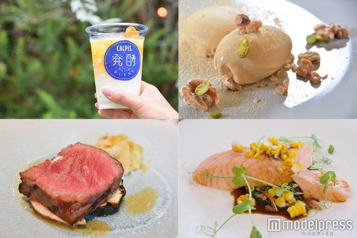 """「カルピス」の隠れ家レストランが美味しすぎ 健康マニアの私も納得の""""体が喜ぶ""""美食とは(C)モデルプレス"""