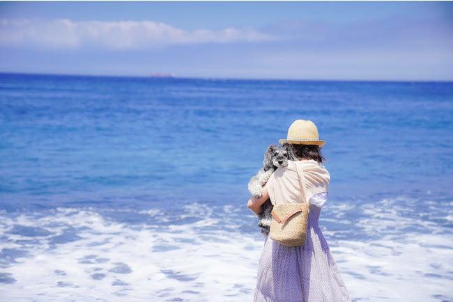 大島の海岸/画像提供:AuTaBi