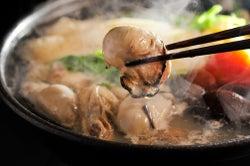 首都圏初の大型フードフェス「せとうちグルメフェス」牡蠣や日本酒…ご当地の味覚集結