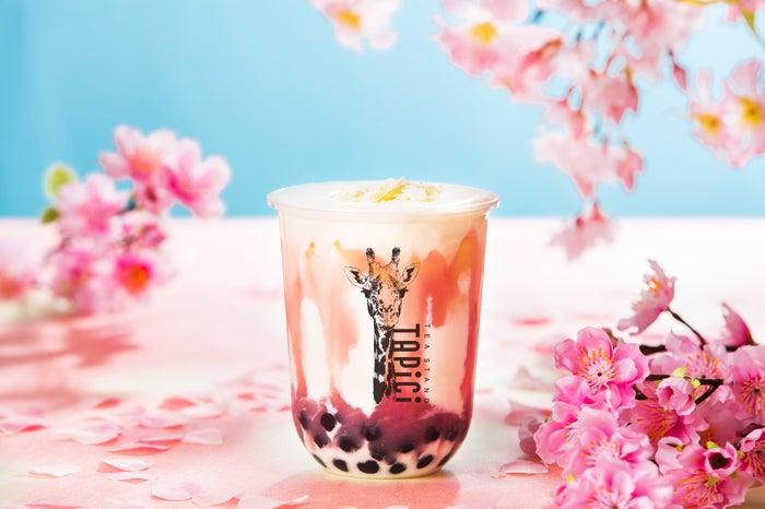 タピチ‐さくらミルク/画像提供:ドロキア・オラシイタ