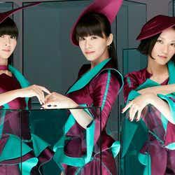 Perfume (提供写真)