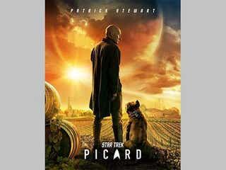 『Star Trek: Picard』にウィリアム・T・ライカーとディアナ・トロイの登場が明らかに!