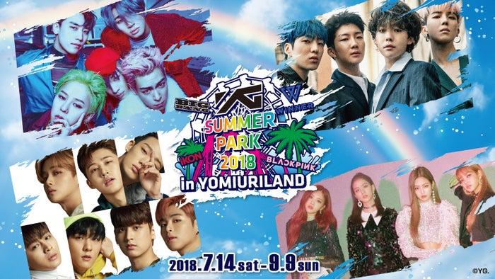 (左上時計回りに)BIGBANG、WINNER、BLACKPINK、iKON(画像提供:avex)