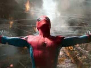 スパイダーマンになりたくて自ら毒グモに咬まれにいった少年たち、入院