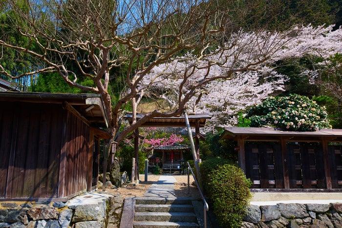 正寿院/画像提供:正寿院
