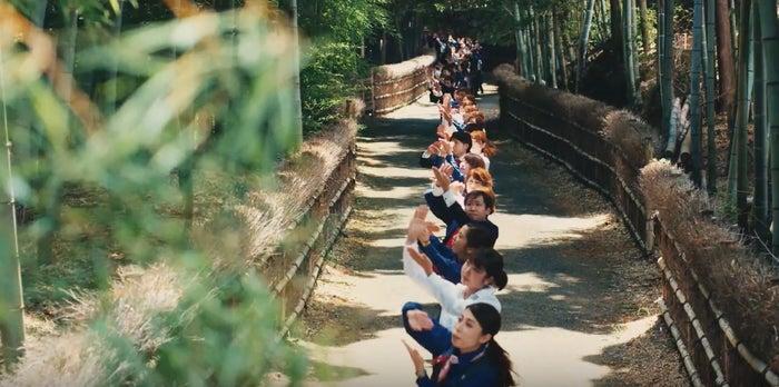 日本各地で撮影/「みずほダンス」より