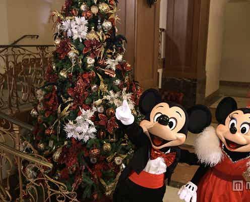 ミッキー&ミニーからのクリスマスプレゼント 迫力あるダンスを披露