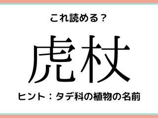 「虎杖」って何て読む…?読めたらスゴい!《難読漢字》4選