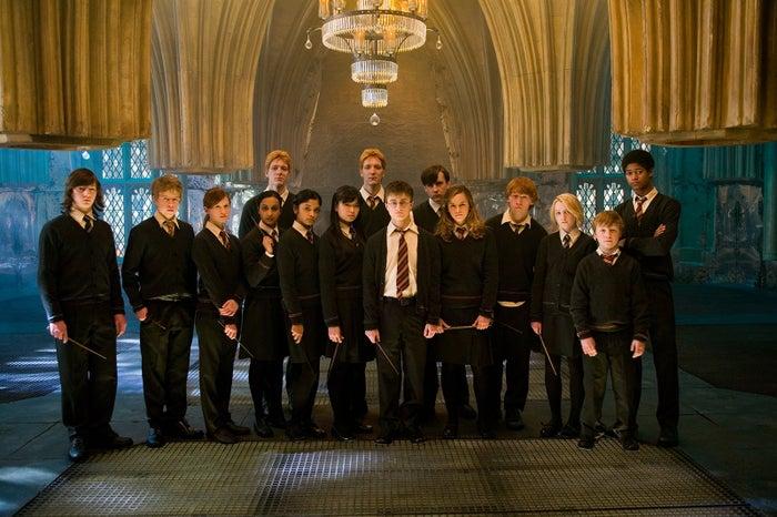 「ハリー・ポッターと不死鳥の騎士団」TM & (c) 2007 Warner Bros. Ent. , Harry Potter Publishing Rights (c) J.K.R.<br>