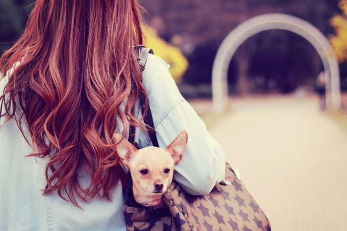 """男性が""""オンナ度高いな""""と思う女性の鞄の中身 「女子力たけー!」/photo by GIRLY DROP"""