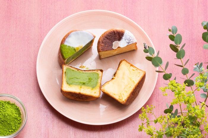 クリームパン抹茶(280円)/画像提供:品道