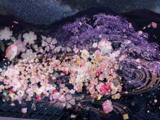 """山ごと""""夜桜""""を独り占め!お花屋さんプロデュースのグランピングで、美食と共に格別な夜を"""