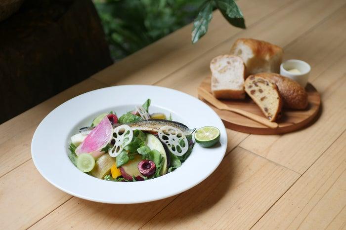 本日のサラダ ¥1,800/画像提供:日と々と