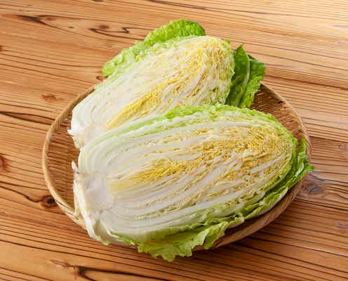 白菜3玉は軽く使える!?白菜をおいしく大量消費できるレシピを知りたい