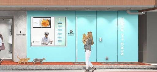 ねこねこチーズケーキ/画像提供:オールハーツ・カンパニー