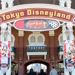 東京ディズニーリゾート、一部グッズのオンライン販売終了へ パーク運営再開日決定で