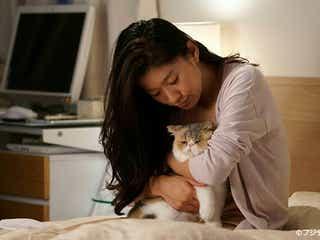 """「オトナ女子」愛猫""""ちくわ""""ぶちゃかわで癒やされる 月9「5→9」キャストからも人気"""