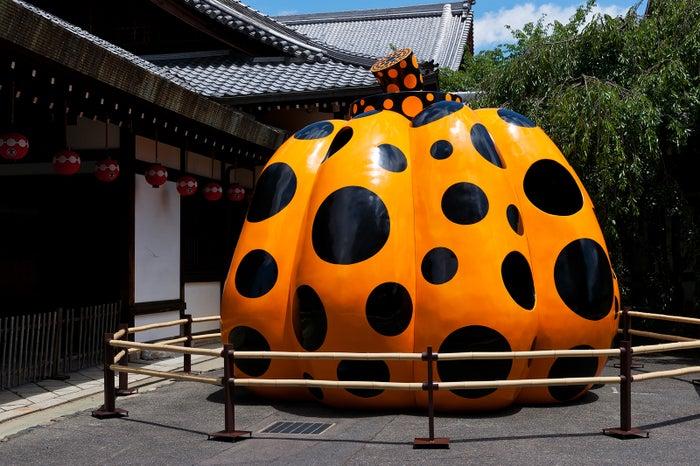 南瓜 2007年/画像提供:フォーエバー現代美術館 祇園・京都
