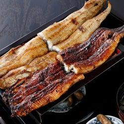 大迫力のボリュームうなぎを食べ比べ!東京で「関西風うなぎ」を楽しむなら『にょろ助 銀座』がおすすめ