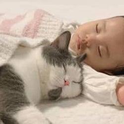え、腕枕してる♡ 生後9カ月の赤ちゃんと見守り猫たちが超絶かわいい!