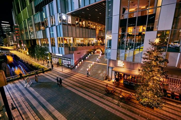 世界のランタンアーチ _ 光のメッセージ(C)渋谷ストリーム