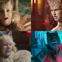 モデルプレス - <映画「キャッツ」性格診断>あなたは何猫タイプ?4つの質問で意外な素顔も