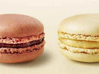 マックカフェ、フランス直輸入のマカロン4種が初登場 気分に合わせて好きな味をチョイス