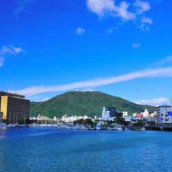 徳島市のシンボル眉山/提供写真