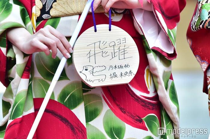 """堀未央奈""""絵馬""""に書いた成人の誓い(C)モデルプレス"""