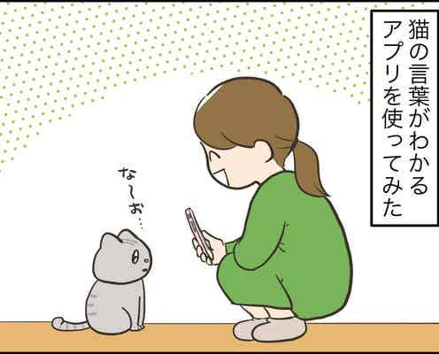 【漫画】アラサー主婦のあるある日記「猫語翻訳アプリ使ったら」