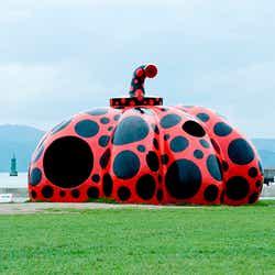草間彌生「赤かぼちゃ」2006年 直島・宮浦港緑地 写真/青地 大輔