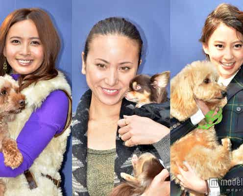 道端アンジェリカ、加藤夏希、河北麻友子らが愛犬を連れて登場
