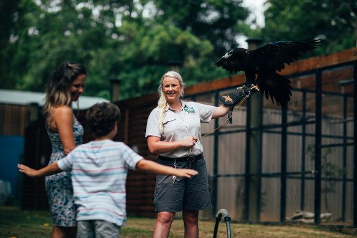 自然動物保護園「カランビン ワイルドライフ サンクチュアリー」(提供画像)