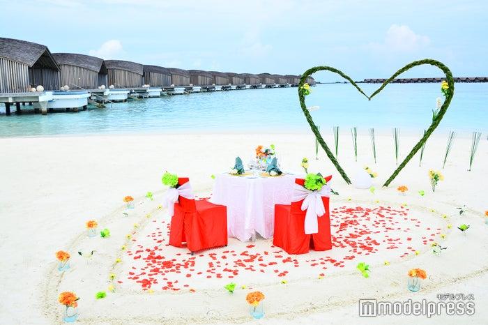 ロマンティックディナー(C)モデルプレス