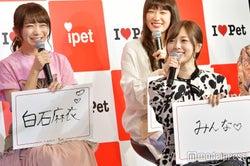 乃木坂46に「ペットになるなら誰のペットになりたいか」と聞いたら…白石麻衣&秋元真夏コンビのやり取りに注目
