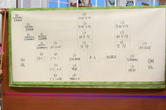 「はじめまして!一番遠い親戚さん」(C)日本テレビ