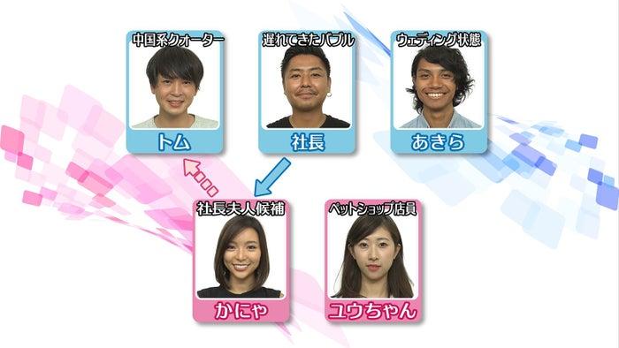 「あいのり:Asian Journey」メンバー相関図/第22話より(C)フジテレビ