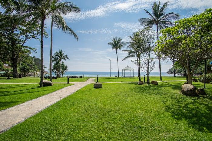 ビーチの芝生/画像提供:日本スターウッド・ホテル(株)広報事務局