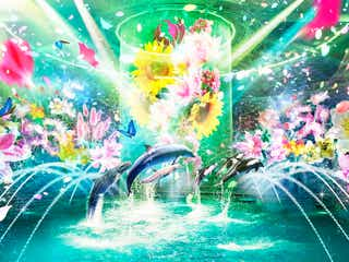 """マクセルアクアパーク品川で「フラワーアクアリウム」花・光・海の世界が調和する""""初夏の絶景"""""""