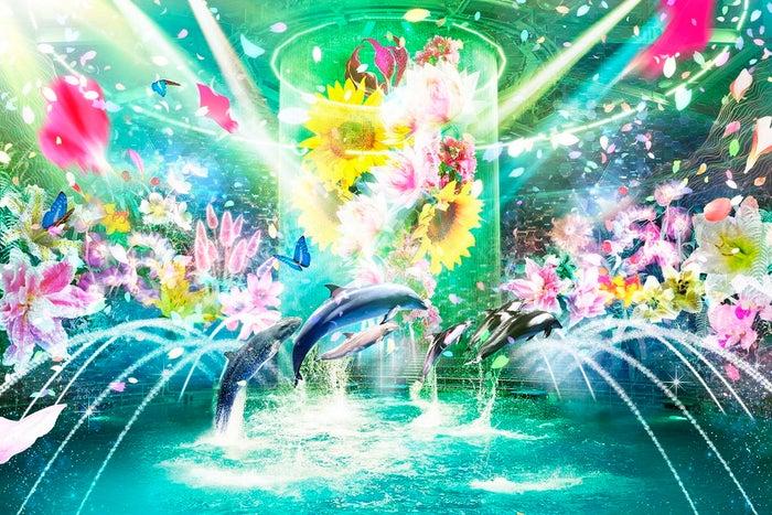 NAKED FLOWER AQUARIUM‐Bring You Happiness‐/画像提供:横浜八景島